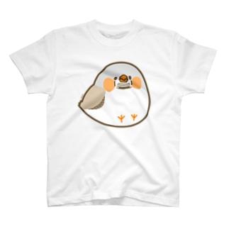 まるっこいキンカチョウさん T-shirts