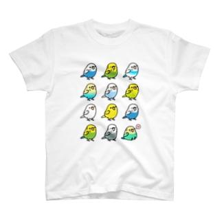 (両面) Chubby Bird セキセイインコ大集合 & オカメインコ大集合 T-shirts