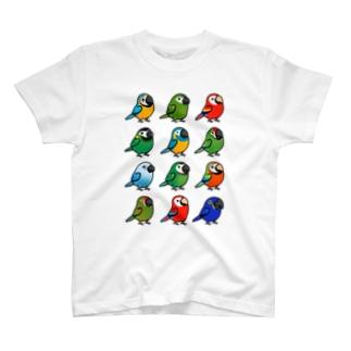 (両面) Chubby Bird コンゴウインコ大集合 & ラブバード大集合 T-shirts