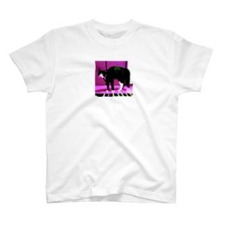 ボフ猫(ピンク) T-shirts