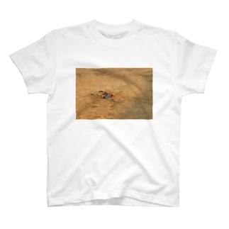 Goodbye T-shirts
