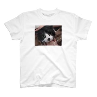プーちゃん T-shirts