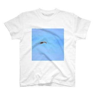 チョウゲンボウのごちそう T-shirts