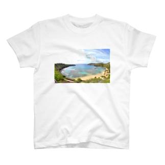 ハナウマ湾 T-shirts