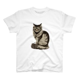 うちの野良猫 T-shirts