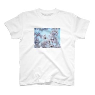 sakura2 T-shirts