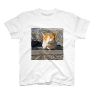 島の野良猫 T-shirts