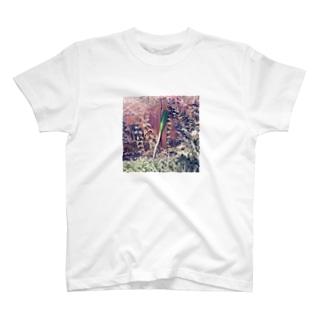 ネギファッション T-shirts