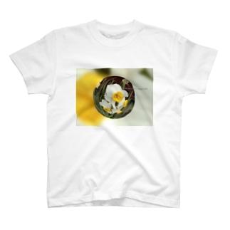 光景 sight735 水仙 花 FLOWERS  宙玉(そらたま) T-shirts