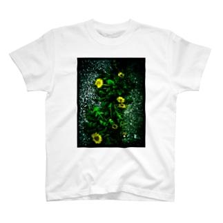 たんぽぽ4 T-shirts