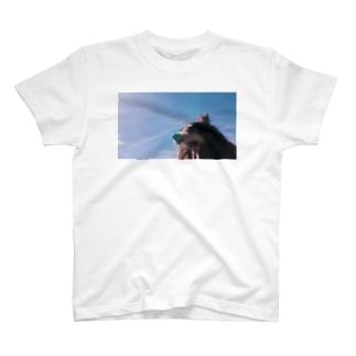 あくびする愛犬Tシャツ(前) T-shirts