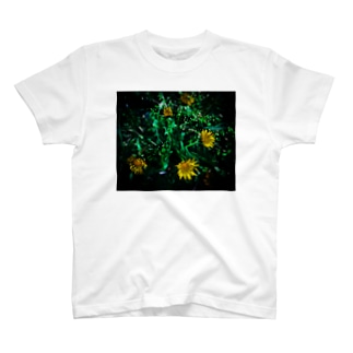 たんぽぽ5 T-shirts