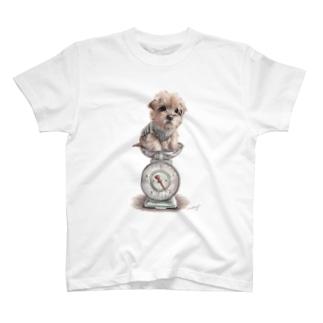 ノーフォークテリア30 T-Shirt