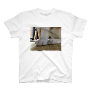 しろの脚 T-shirts