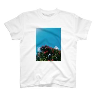 2021年4月の秋田 T-shirts