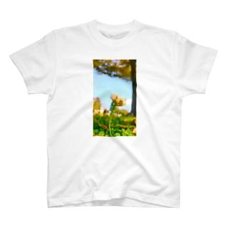 こうえんで T-shirts
