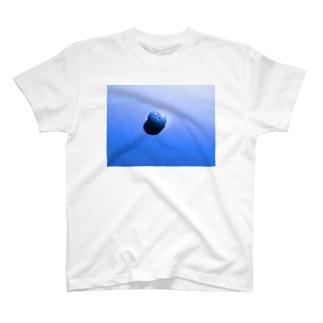 lowlight T-shirts
