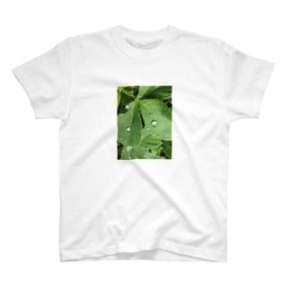 葉っぱさん T-shirts