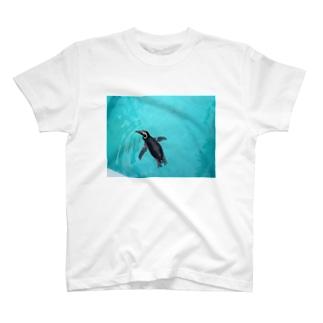 ペンギン T-shirts