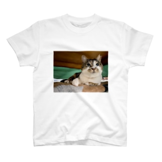目がぱちくりガブリエル T-shirts