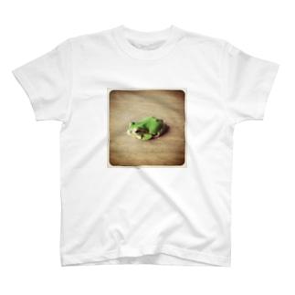 蛙 T-shirts