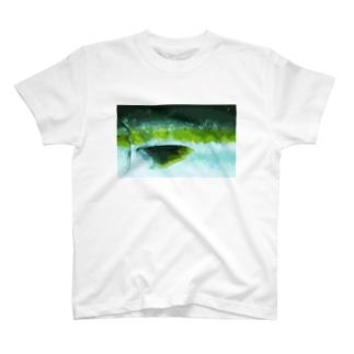鰤 T-Shirt