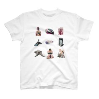 シフゾウ T-shirts