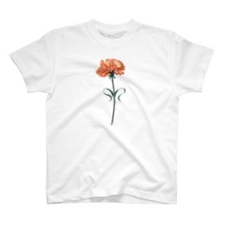 Orange carnation T-shirts