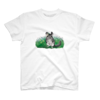 Cassia(お花) T-Shirt