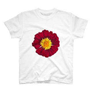 ハートのガーベラ T-shirts