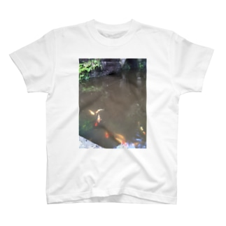こい T-shirts