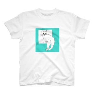 ねこのカイ 3 T-shirts