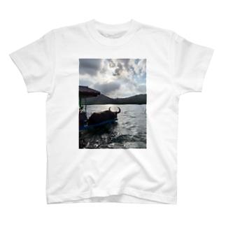 旅するTシャツ37 T-shirts
