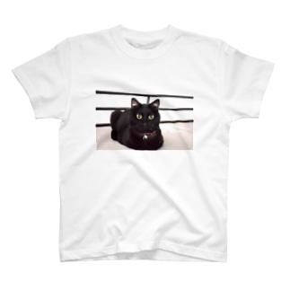 黒猫のうめたん T-shirts