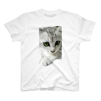 ミィ T-shirts