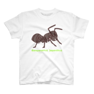 akari🌼虫デフォルメ作家のクロオオアリちゃん【むしのなかま】 T-shirts