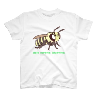 ニホンミツバチちゃん【むしのなかま】 T-shirts