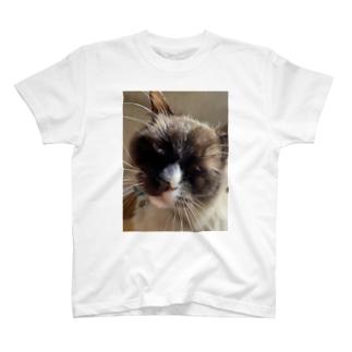 なんやお前 T-shirts