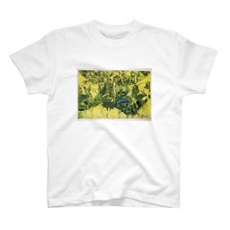 動物達~銅版画シリーズ1 T-shirts