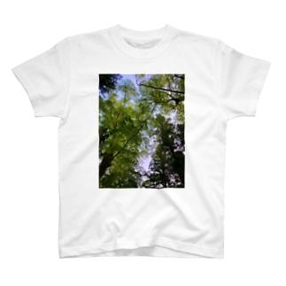 新緑の隙間 T-shirts