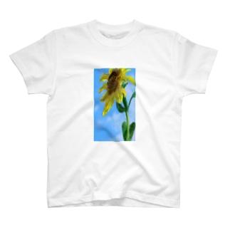 夏休みを心待ちにする向日葵 T-shirts