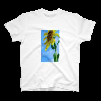 hansinnnの夏休みを心待ちにする向日葵 T-shirts