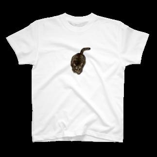 hansinnnのなに見てんのよー T-shirts