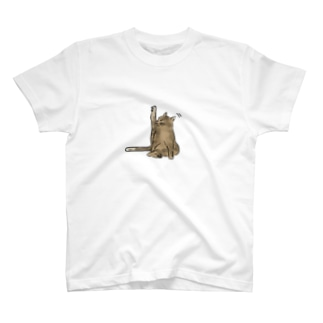 Grooming CAT T-shirts