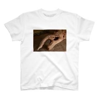自然木アート T-shirts