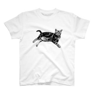 ねこのマャーちゃん ごろり T-shirts