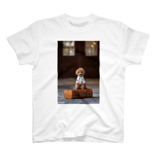 シックなトイプードル T-shirts