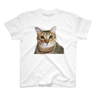えだもものグラフィックつみれ T-shirts