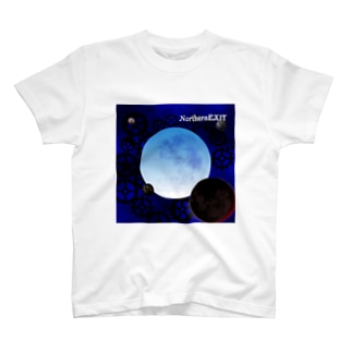 icePLANET allVIEW T-shirts