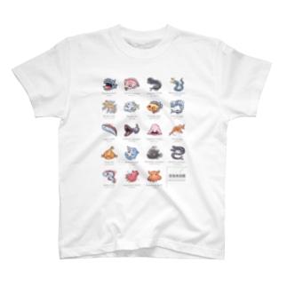 深海魚図鑑 カラーver T-shirts
